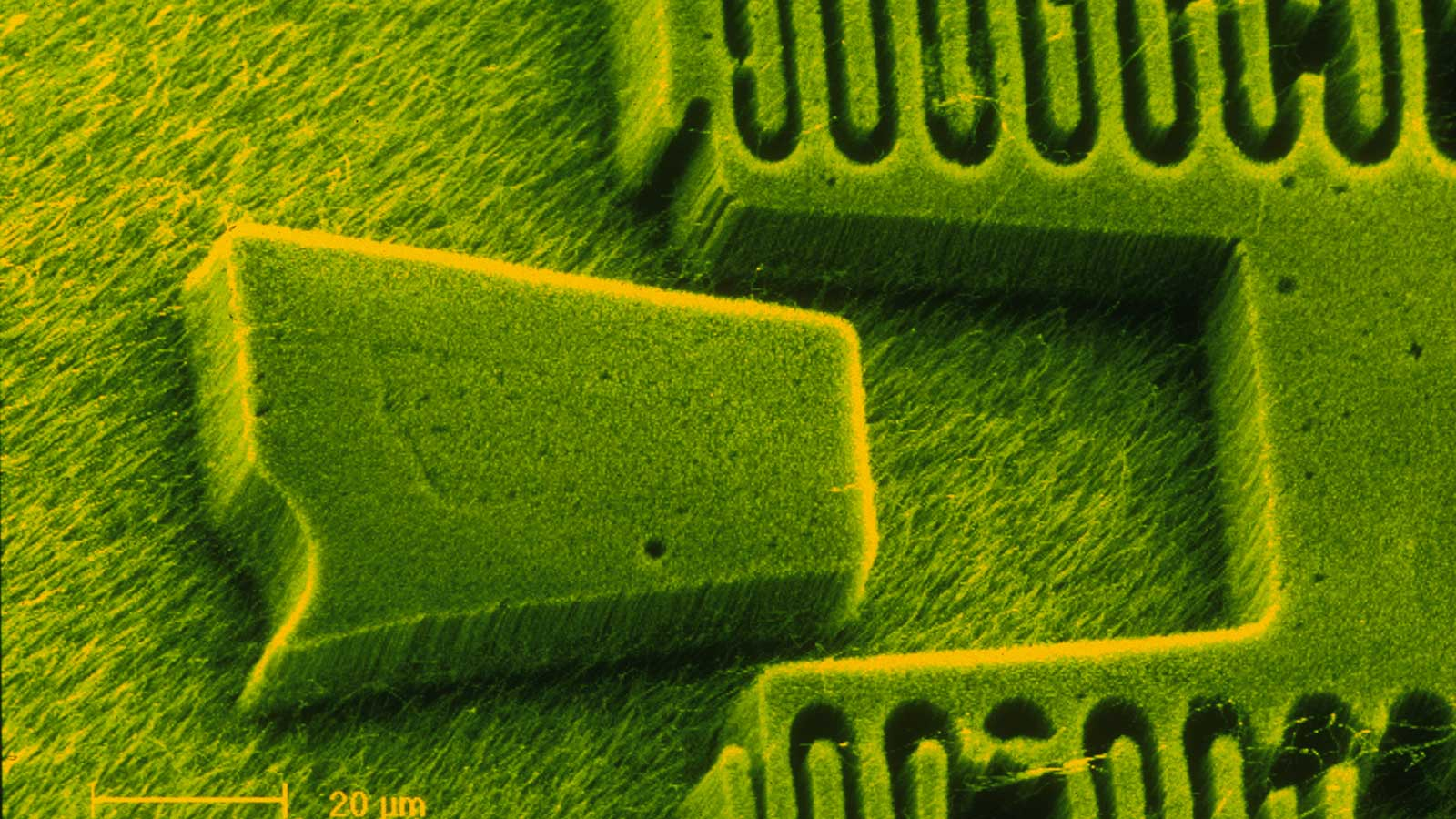 7 Nanotechnology Examples that Already Exist